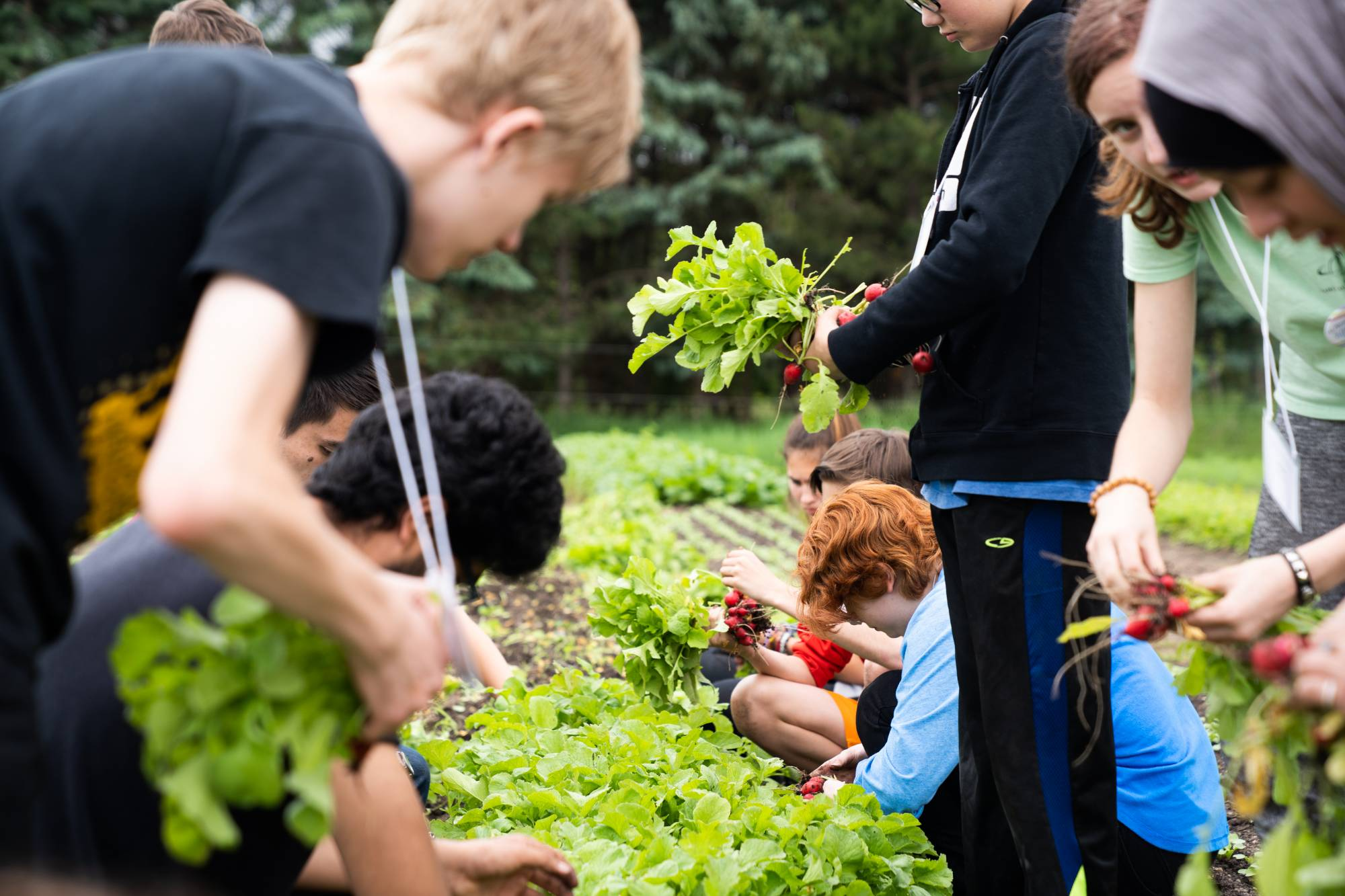 Students work on crops at Plainsong Farm